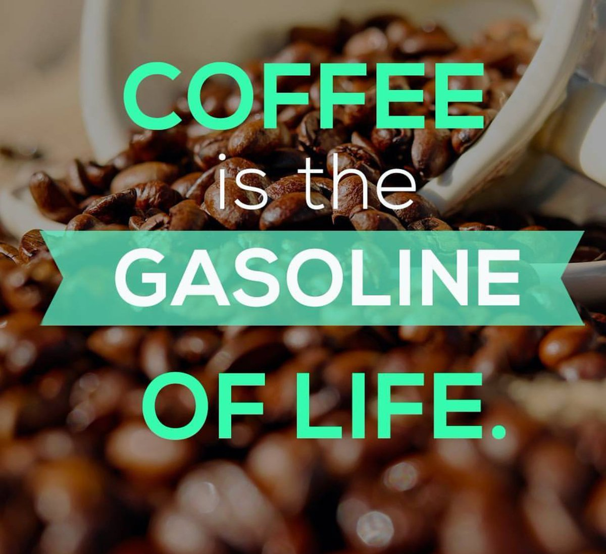 Who needs a car when they&#39;ve got coffee? That will give you all the fuel you need to walk. #healthylife #love #coffee #coffeeaddicts #coffeelovers #goodmorning #workout<br>http://pic.twitter.com/mwP9jWt9kz