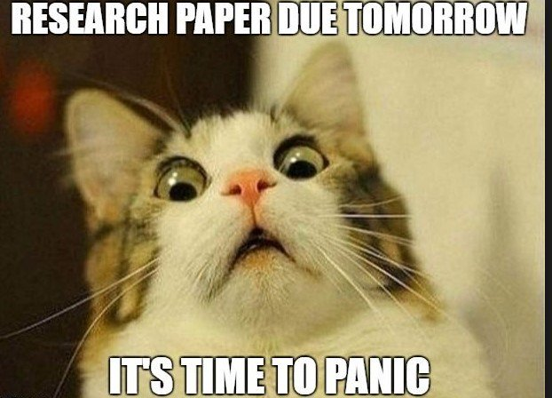 Image result for start your research meme