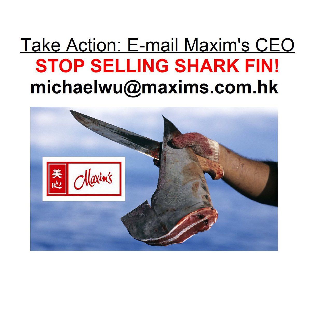 Reposting this again. Please everyone... TAKE ACTION! Drop Maxim&#39;s CEO Michael Wu a couple of lines on email. Let him know your thoughts on #shark fin? <br>http://pic.twitter.com/gmC0l2SGSt