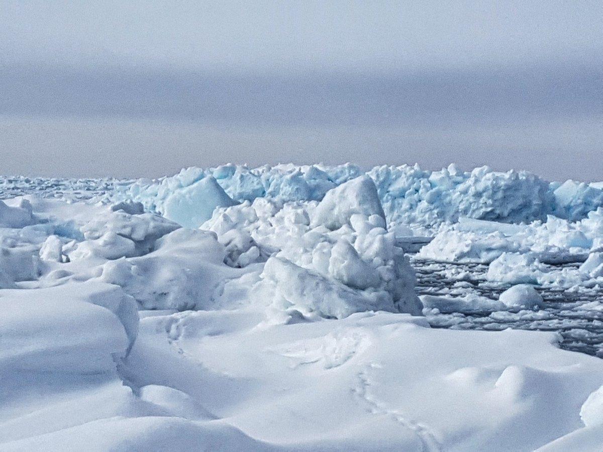 A little sea ice. #ocean #sea #spring ht...