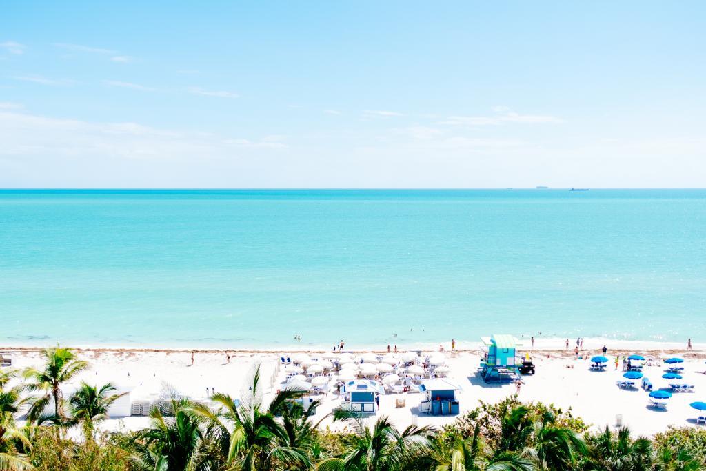Wow! 😎 Voos diretos para #Miami a partir de R$ 1.689  Confira as melhores ofertas de passagens aéreas para os Estados Unidos e encontre destinos com até 50% de desconto para uma viagem muito mais barata! 🇺🇲✈️ https://t.co/uwXO9kda6N