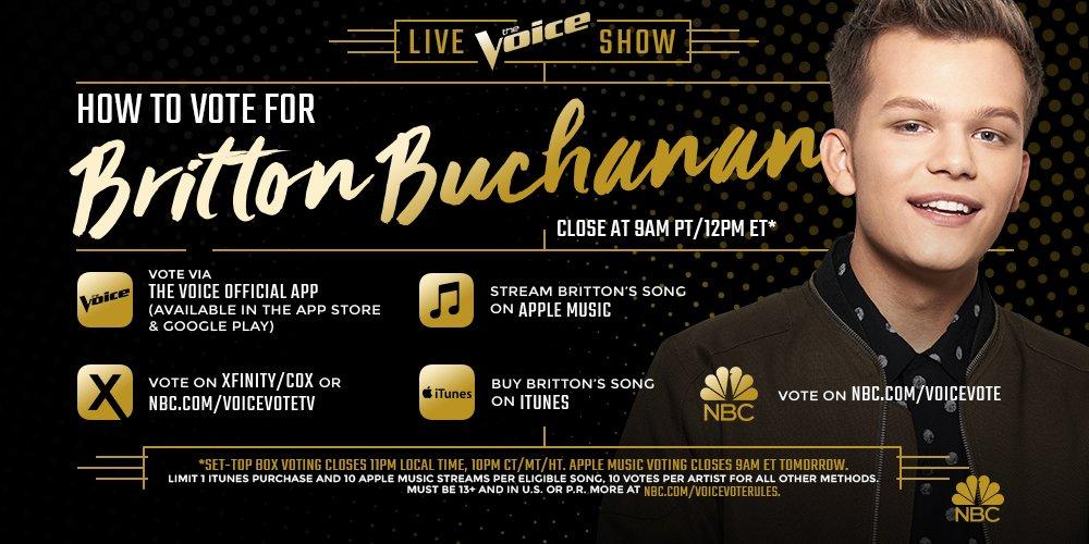 RETWEET IF YOU THINK @BrittonBuchanan is THE VOICE! #VoiceFinale