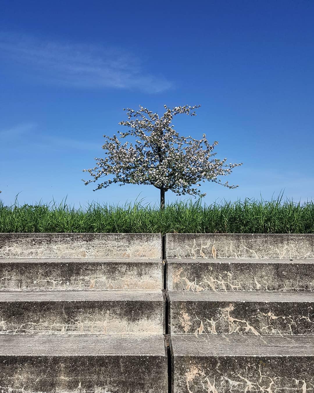 Nature > concrete #WHP�� https://t.co/gKEsjQV2XA https://t.co/PsV2RRWuFE