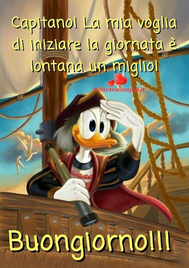 Chiara Civolani On Twitter Aiutoooo Però Mio