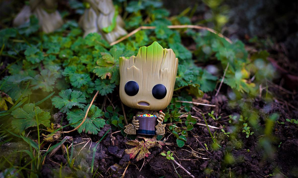 How cute is this #Groot  with candy bowl #Funko? It&#39;s a #limitededition - don&#39;t miss out http:// emp.me/13q0  &nbsp;   #IAMGROOT  @FunkoEurope #emp #empuk #funko #funkopop #wearegroot #grootfunko #dancinggroot #gotg  #gotgvol2 #guardiandsofthegalaxy #babygroot #guardiansofthegalaxy  <br>http://pic.twitter.com/vI1PoXuUC0