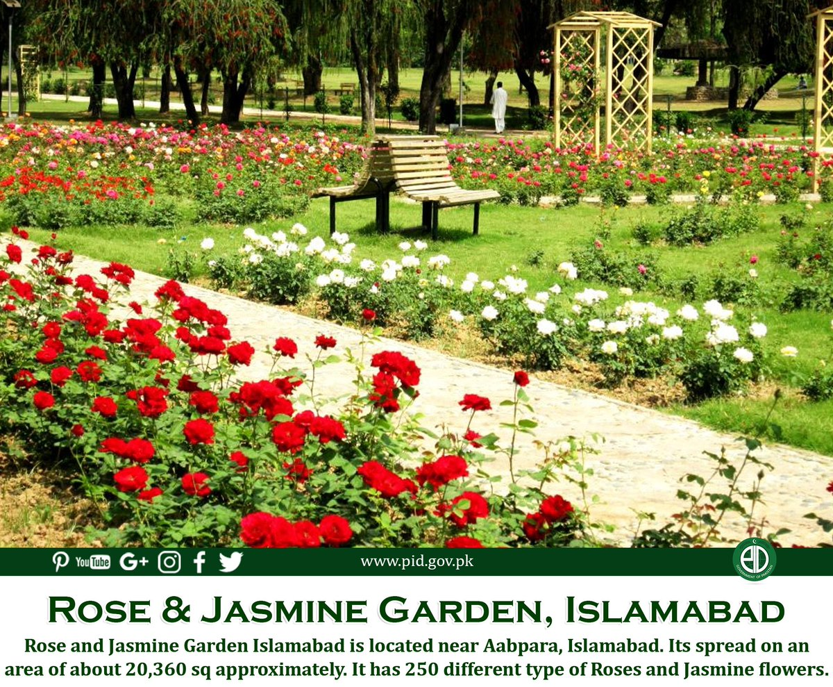 Govt of pakistan on twitter famous for its ravishing roses the govt of pakistan on twitter famous for its ravishing roses the garden is home to some 250 varieties of roses as well as a dozen types of jasmines izmirmasajfo