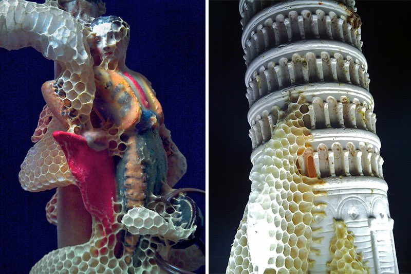 Artista Aganetha Dyck makes art with bees and honeycombs.. Great!! https://t.co/CtX7kQGDxG 🐝🍯🖌😍🙏🏻 #foodart @aldo_spinelli @artribune