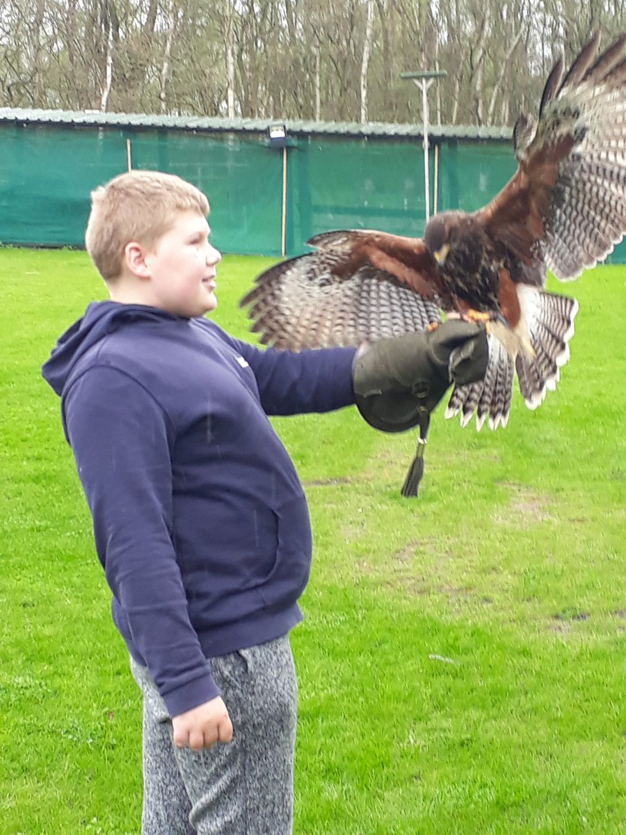 I think our young friend Harry from @TogetherTrust #inscapehouseschool had a rather good morning falconry training #Autism #Aspergers #Adhd #abilitynotdisability #Talent <br>http://pic.twitter.com/2IVkXkeQ4d