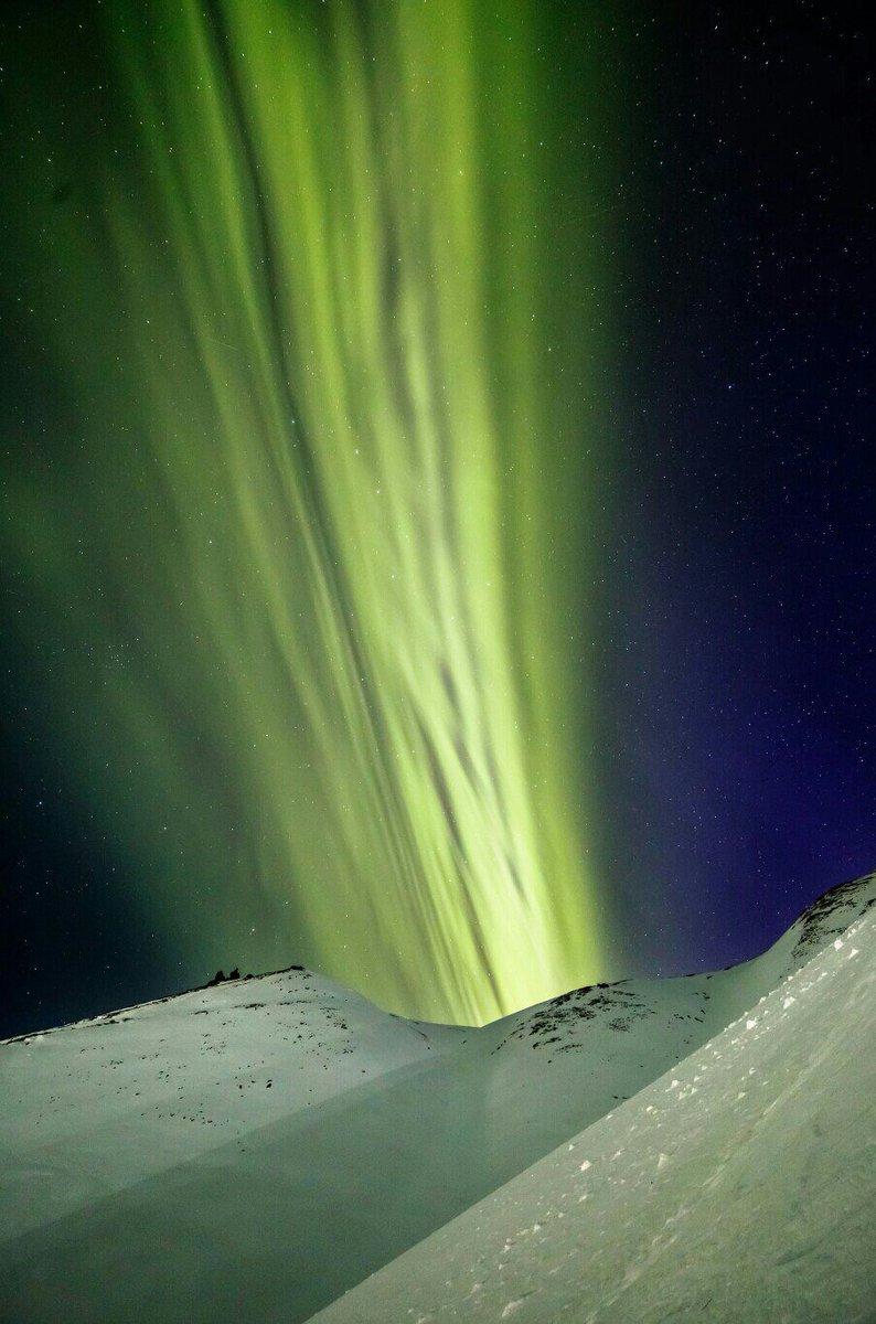 aurora shooting