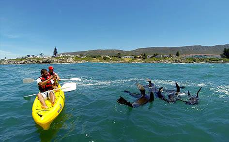 If you&#39;re looking for something fun to do during your down time at the Walkerbay Xtreme, why not have a look at @HermanusKayak and @gobikehermanus.  In association with WESGRO, our destination partner.  @discoverctwc #discoverctwc #FindYourXtreme<br>http://pic.twitter.com/kH0mv10ZxS
