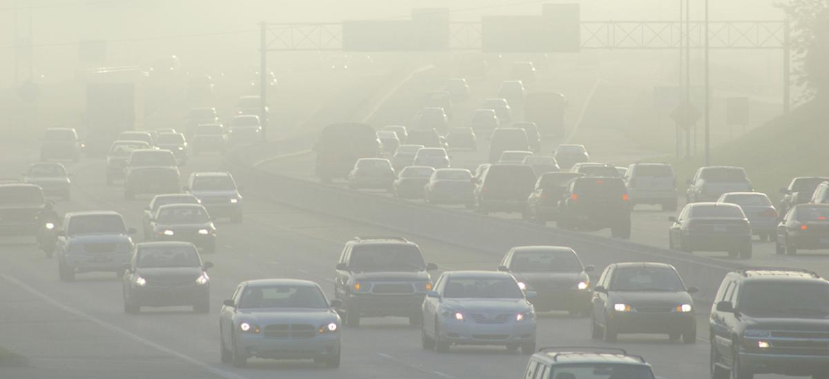 Most Polluted Cities Ranking  http://www. lung.org/our-initiative s/healthy-air/sota/city-rankings/most-polluted-cities.html &nbsp; …  #AirQuality <br>http://pic.twitter.com/uyn2PbXs0x
