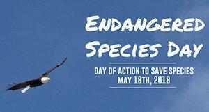 #EndangeredSpeciesDay Latest News Trends Updates Images - endangered