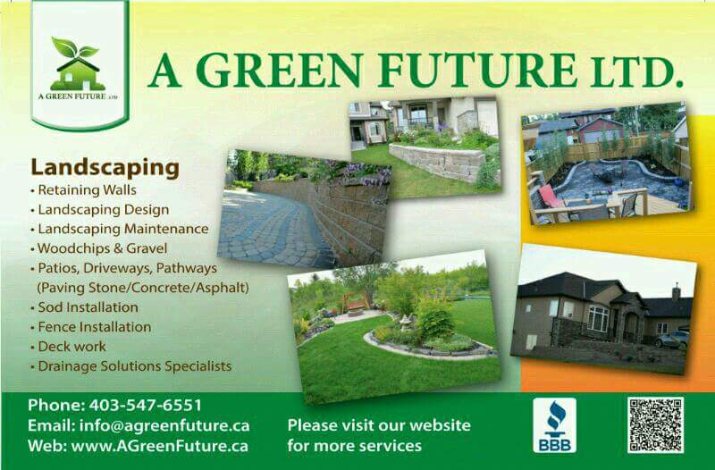 A Green Future on Twitter:
