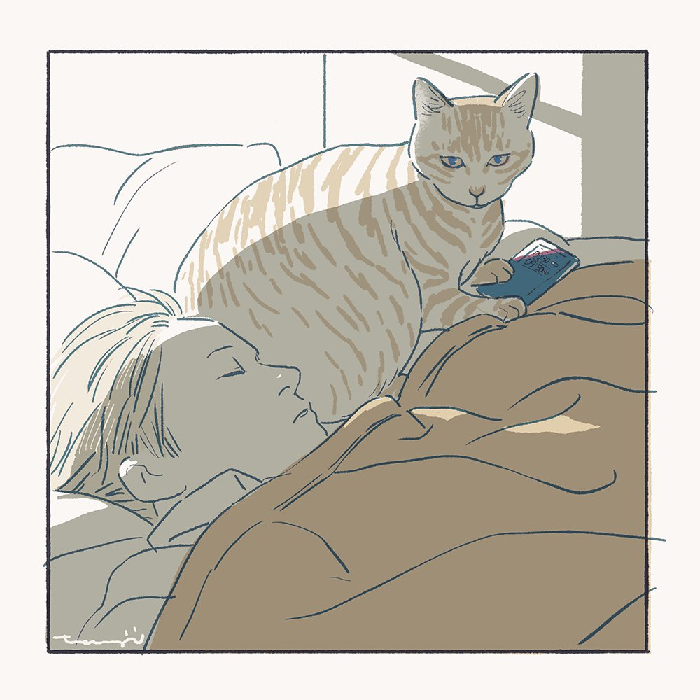 アラーム設定をオフにする猫