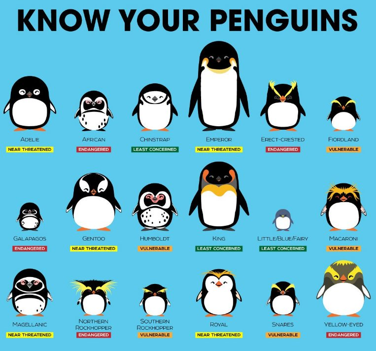 Happy #WorldPenguinDay! Spot your favourite with this brilliant #citizenscience project https://t.co/Wf4koL93ui  (Pic: )