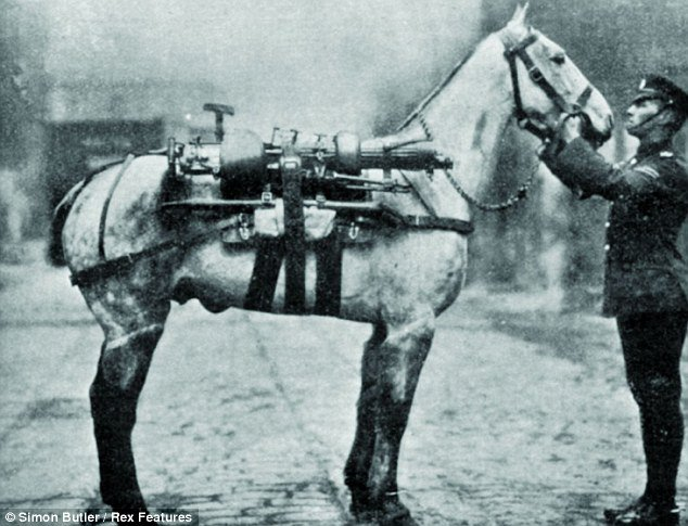 Over 16 million #animals served in the First World War. They were used for transport, communication and companionship. #AnzacDay2018 Remember their sacrifice. #Animals at #War #ANZAC <br>http://pic.twitter.com/IyeFzcId3z