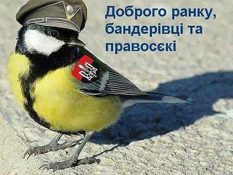 Госдепартамент США потребовал от России освободить Сенцова и других украинцев, незаконно содержащихся в заключении в РФ - Цензор.НЕТ 9209