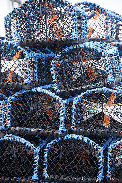 Pennysteel Cottage is located in the beautiful fishing village of Staithes in North Yorkshire.  http:// weacceptpets.co.uk/NorthYorkshire /745 &nbsp; …  #Fishing #DogFriendly #Holiday #Travel #Cottage #Staithes #NorthYorkshire #England<br>http://pic.twitter.com/lcKbAEb7DR