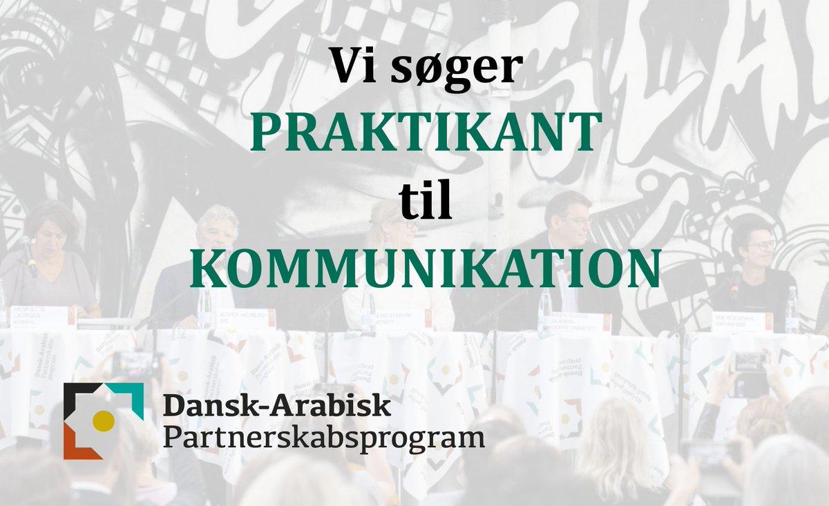 Dapp On Twitter Bliv Kommunikationspraktikant Hos Dansk Arabisk