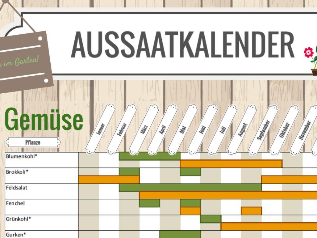 download Lietuvių kalbos atlasas 1, 2
