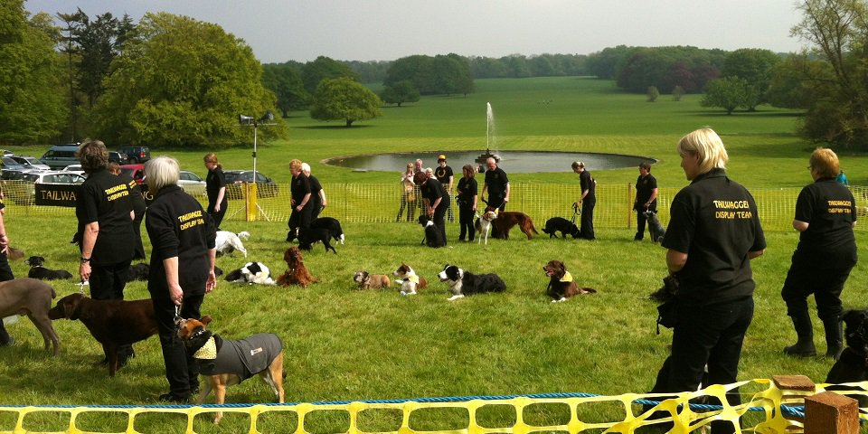 Family Dog Day - Sun 13th May  Take part in the fun dog show at @SledmereHouse and enjoy displays, demonstrations, have-a-go games and browse the stalls.  http:// weacceptpets.co.uk/East_Yorkshire /744 &nbsp; …  #NorthDalton #Driffield #EastYorkshire #England #Holiday #Travel #Event #DayOut #Family #Pets #UK<br>http://pic.twitter.com/NU6xG6WBxl