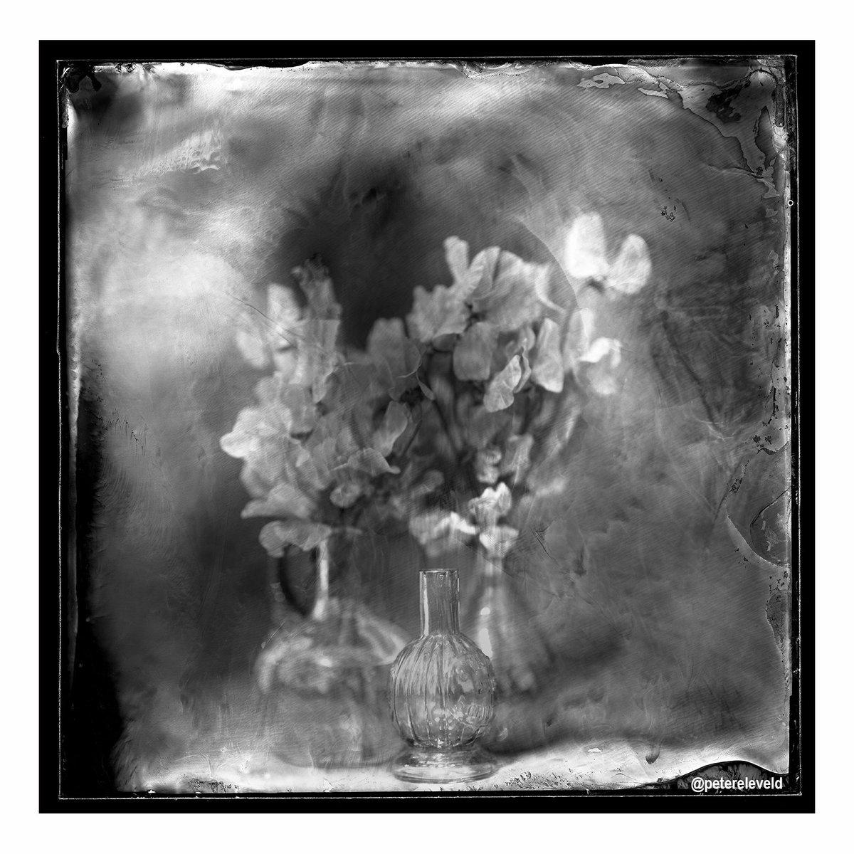 Peter Eleveld On Twitter Fine Art Photography Awards Fine Art