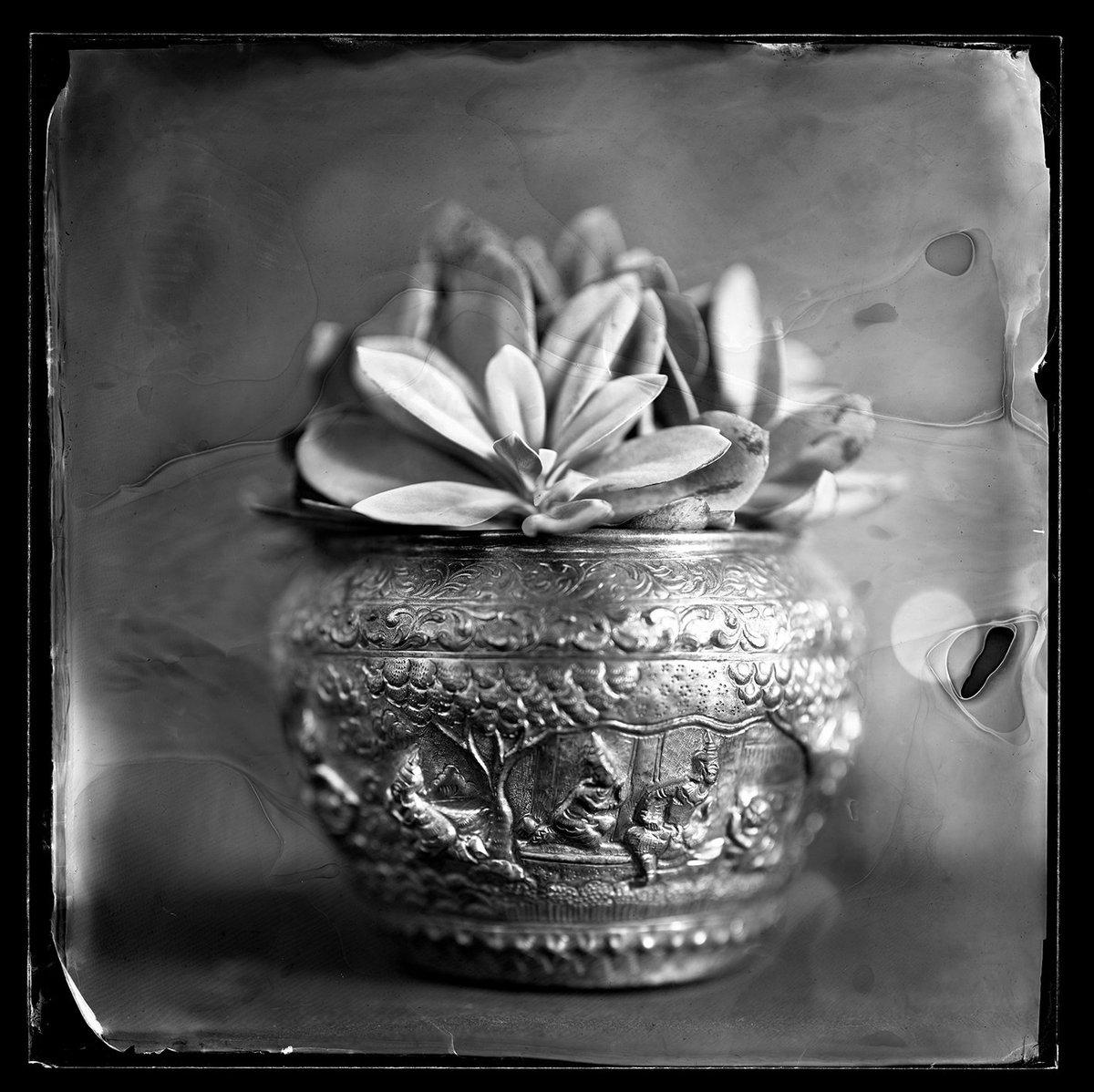 Peter Eleveld على تويتر Fine Art Photography Awards Fine Art