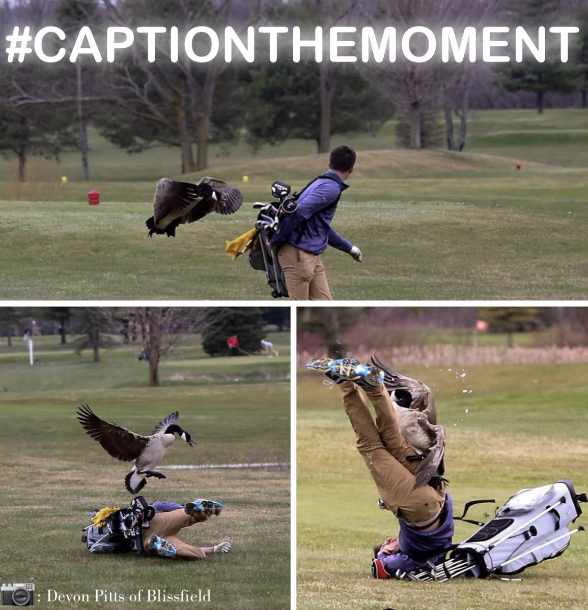 "Who said golf wasn't a contact sport? This MI high school student from @BlissAthletics would tell you otherwise. Check out these INSANE photos of a goose attack!   It's #CaptionTheMoment. Look out for Monday's ""The 313,"" & we'll give a tip of the cap to our favorite responses"