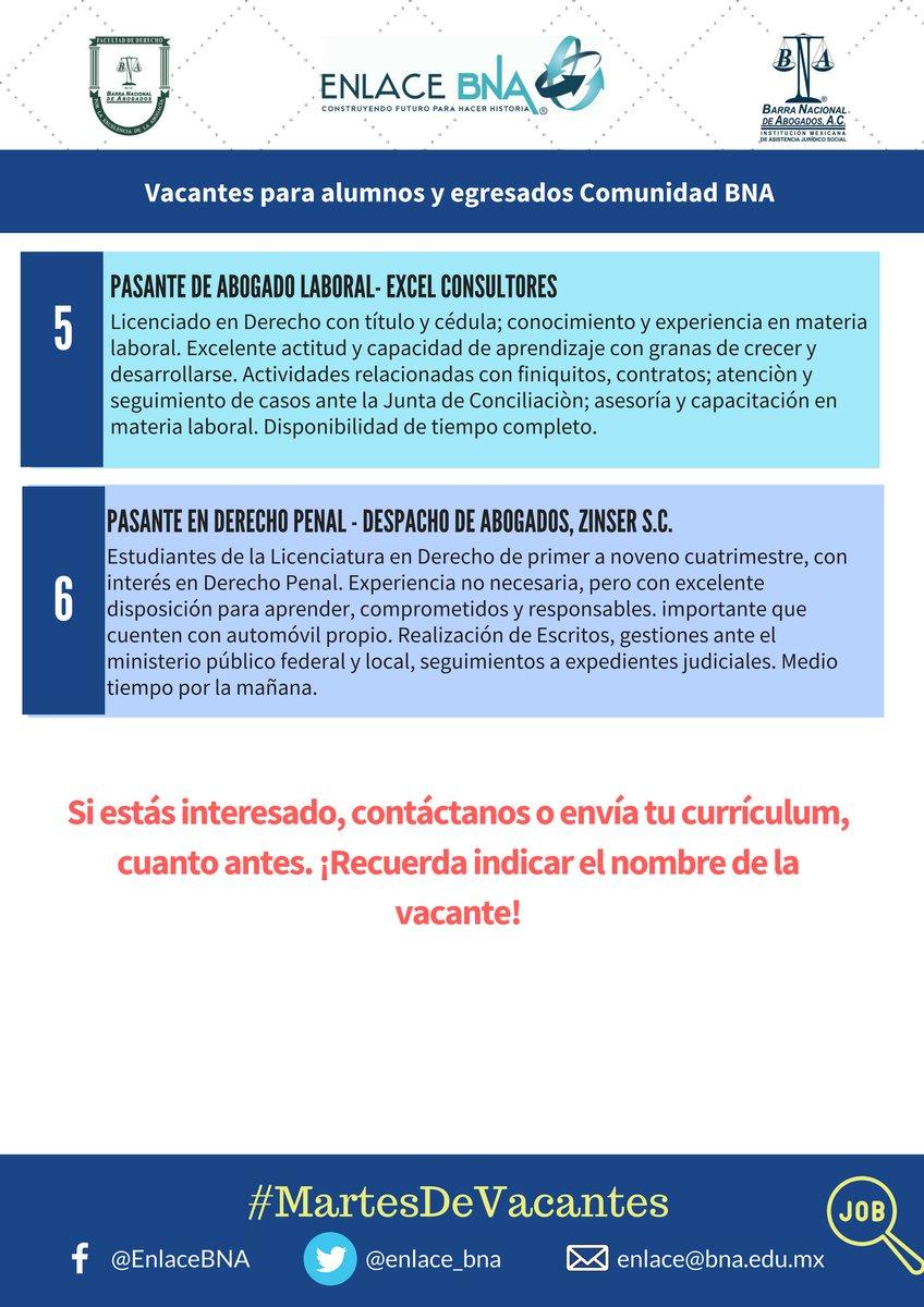 Famoso Construyendo Tu Currículum Como Estudiante Bosquejo - Ejemplo ...