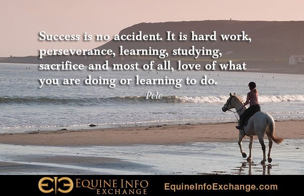 &quot;WE LOVE what we do, and can help you too! We will work hard with you &amp; help GROW your business. DM us or contact info@equineinfoexchange.com for #AmazingThings #Equine #Global #Grow #Legend #Iconic #SocialMedia #Love #PositiveMentalAttitude  &quot; <br>http://pic.twitter.com/Lco3xk5QUl