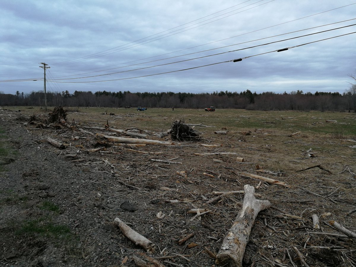 Drove thru Hoyt #NewBrunswick  this evening. Saw a bunch of good folks helping #farmer clear debris from January&#39;s #flashflood Nice! <br>http://pic.twitter.com/w0Rsl1UNCl