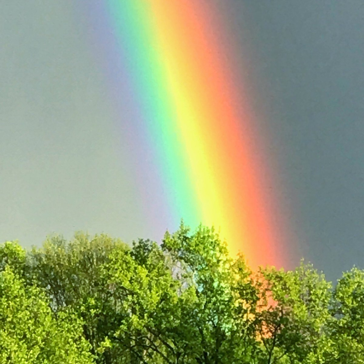 настроение цвета радуги фото израиля