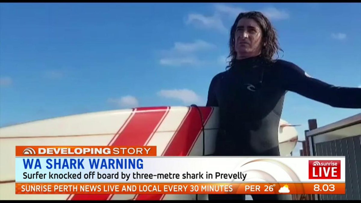 Image for the Tweet beginning: Shark warning for Prevelly after