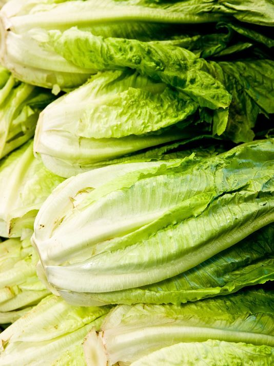 ALERT: E. coli outbreak tied to lettuce spreads to 84 people in 19 states - https://t.co/VrIIuyxvJn