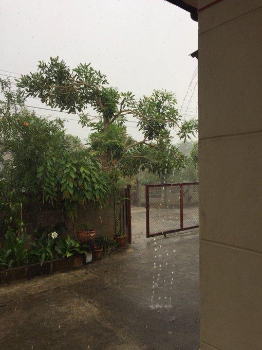 #ฝนตก ภาพถ่าย