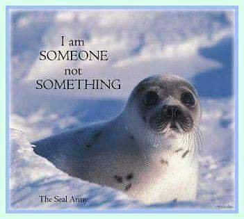 We Live In A World Where #compassion Is A #crime, Because #cruelty Turns A #profit!! #AnimalRights #SEALHUNT @TheSealArmy #SaveTheSeals #MakeFurHistory #EndSealhunt #cdnpoli<br>http://pic.twitter.com/pAyQeloFAX