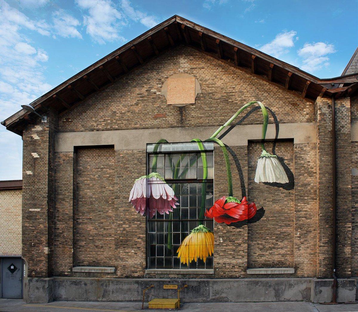 #art #streetart #mural &quot;Wall Flowers&quot; By Chromeo in Wintherthur, Swiss <br>http://pic.twitter.com/tFwzeklMVo