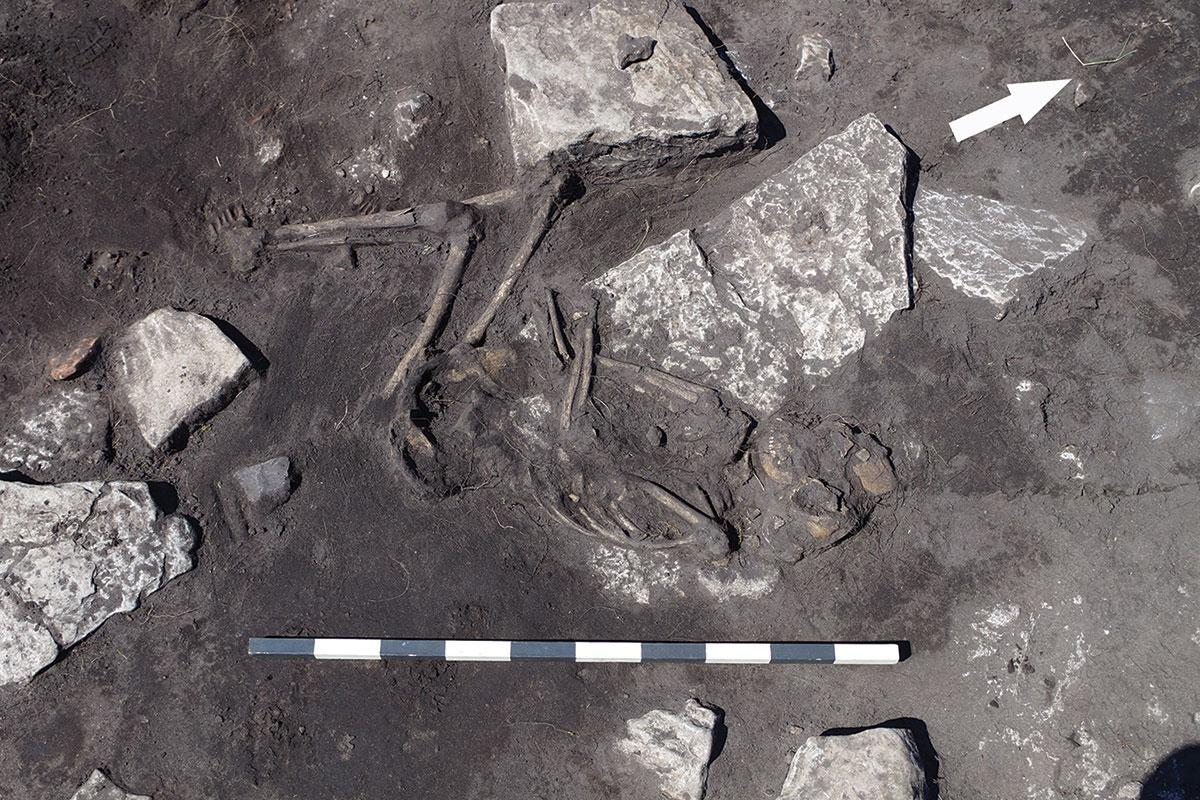 Ancient Swedish massacre hints at chaos after the fall of Rome https://t.co/mLsaXMmpUI