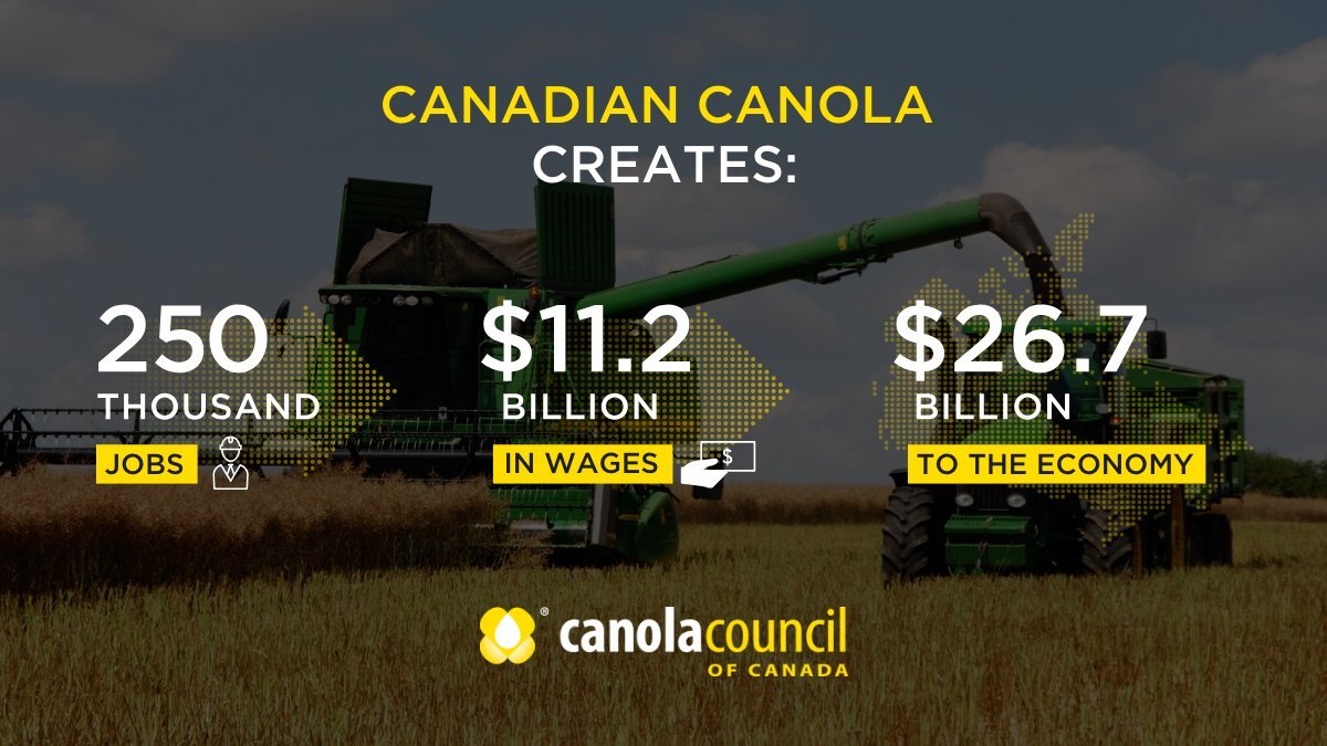 Canola Council of Canada on Twitter: