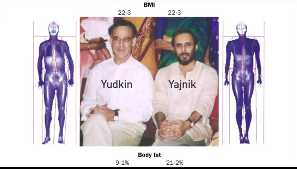 Image result for Yajnik CS, Yudkin JS. The Y-Y Paradox. Lancet