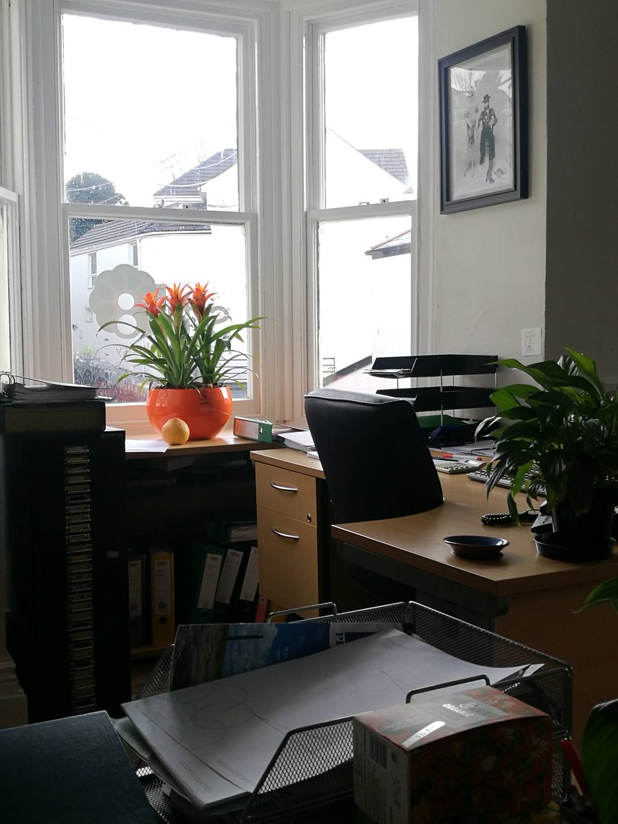 office space planning consultancy. your plants liven up our work spaces so much, we couldn\u0027t image the office without them now! #planning #consultancy #highways #transport #cornwall space planning consultancy t