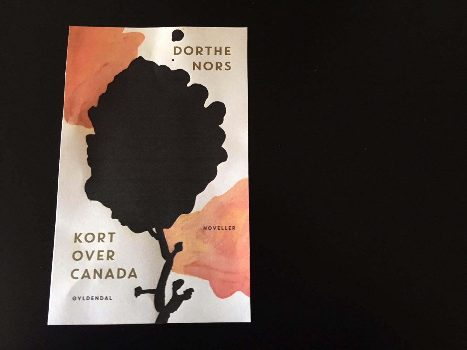 Dorthe Nors On Twitter Look My New Short Story Collection Kort