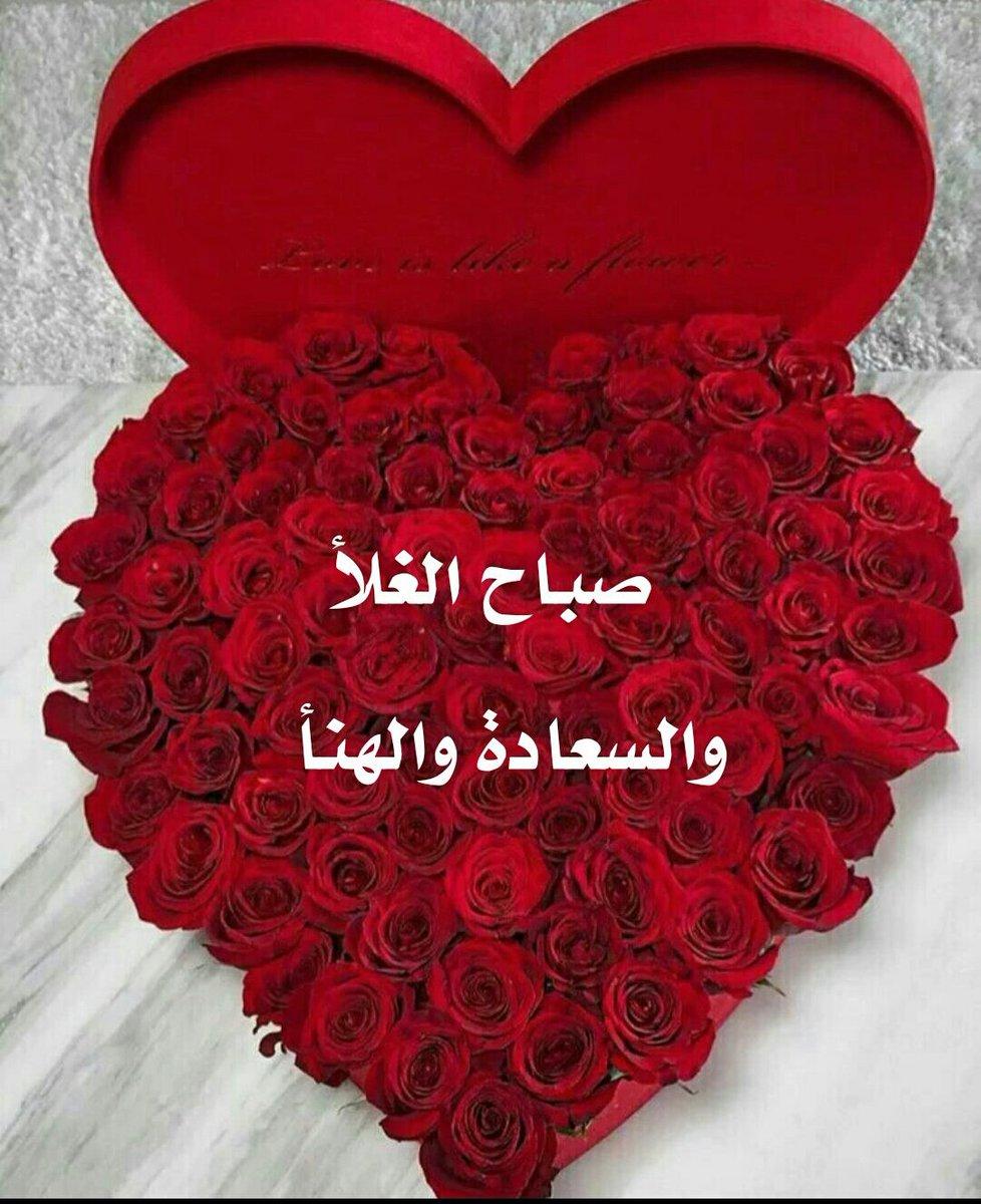 جولان On Twitter صباح الغلا ولهنا وسعاده اخي العزيز