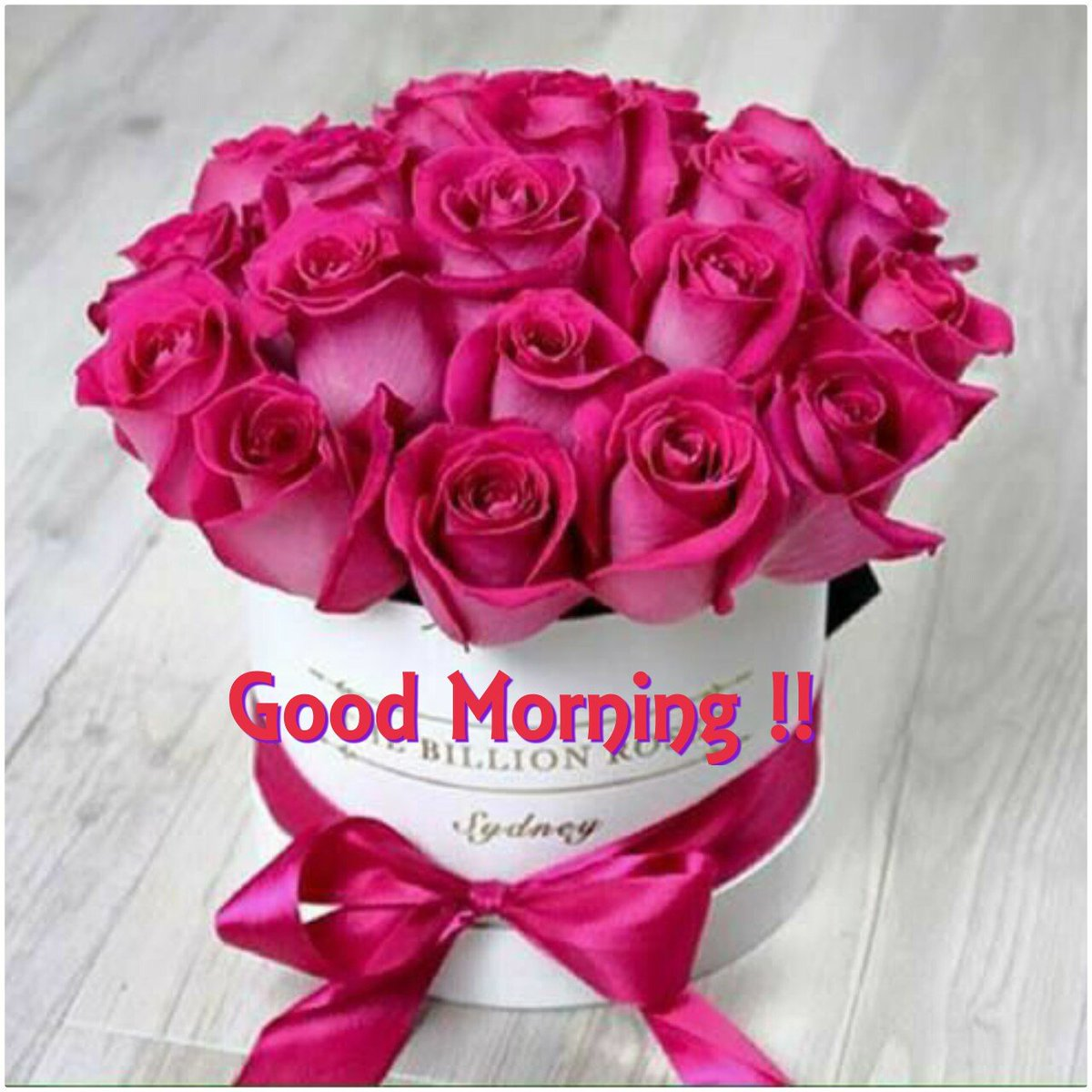 rani gill on twitter goodmorning morning flowers new day new
