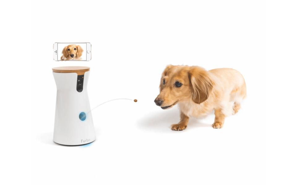 The Furbo Dog Camera Uses Ai To Keep Track Of Your While You Re Not Home Allowing Two Way Chats And Treat Dispensing Http On Forbes 6012dbszi