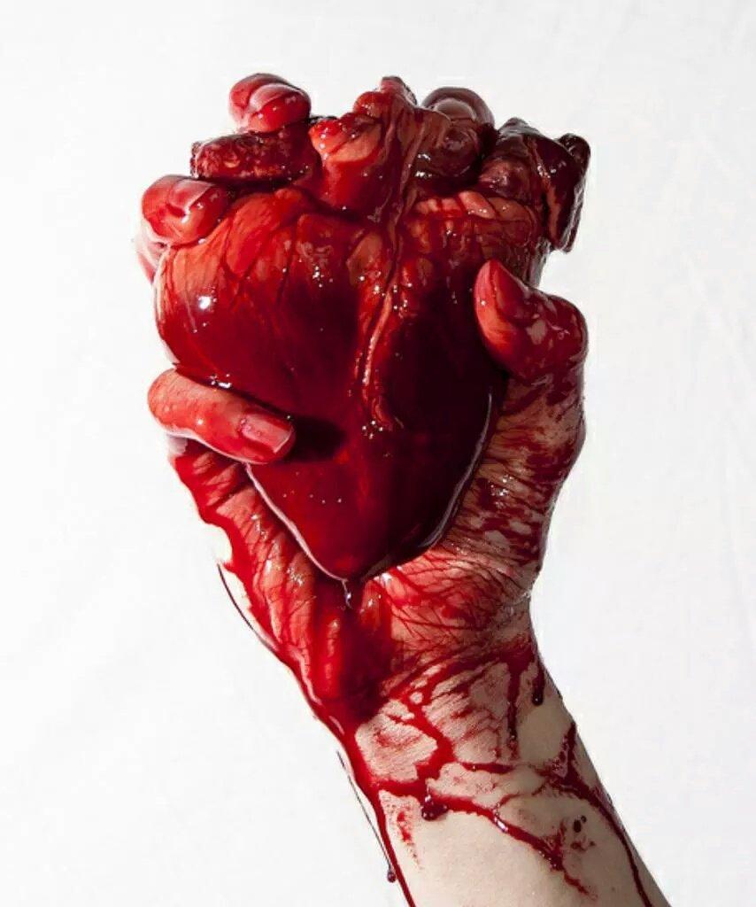 молодого картинки кровавого сердца овал форме