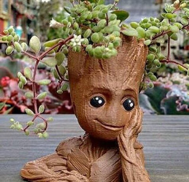 Absolutely #MustHave this adorable #Groot  planter!! Omg! Too cute!! @Marvel @Guardians #IamGroot  @JamesGunn #GuardiansoftheGalaxy  #BabyGroot<br>http://pic.twitter.com/yuyTv1RUoN