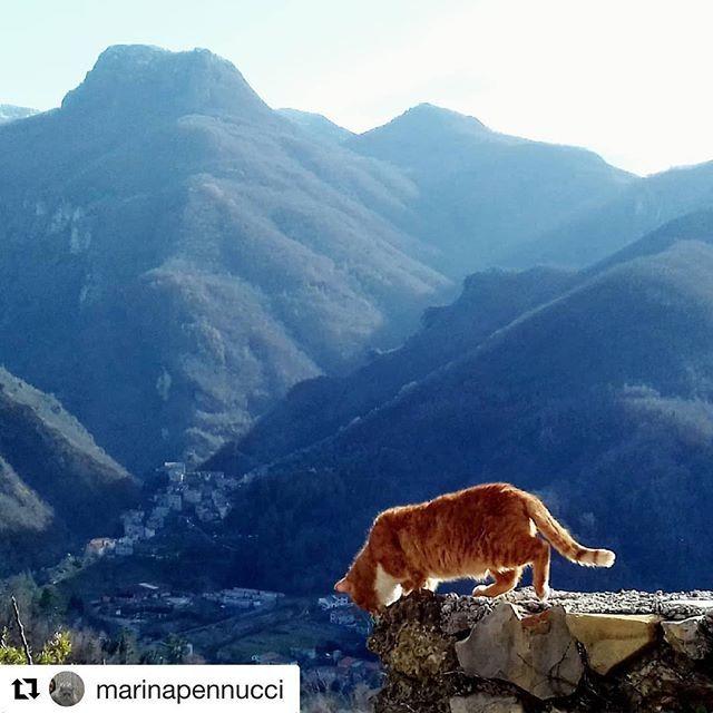 Valle Del Lucido.Monzonealto Hashtag On Twitter