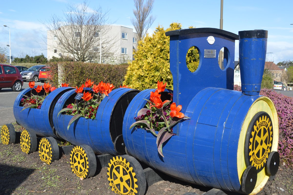 test Twitter Media - Our train planter provided by NB Rotary looking very colourful in the sun with Tulip Show Winner, a kaufmanniana type with purple mottled leaves #TulipFestival #OurBloom https://t.co/Zt4WlAzMi0