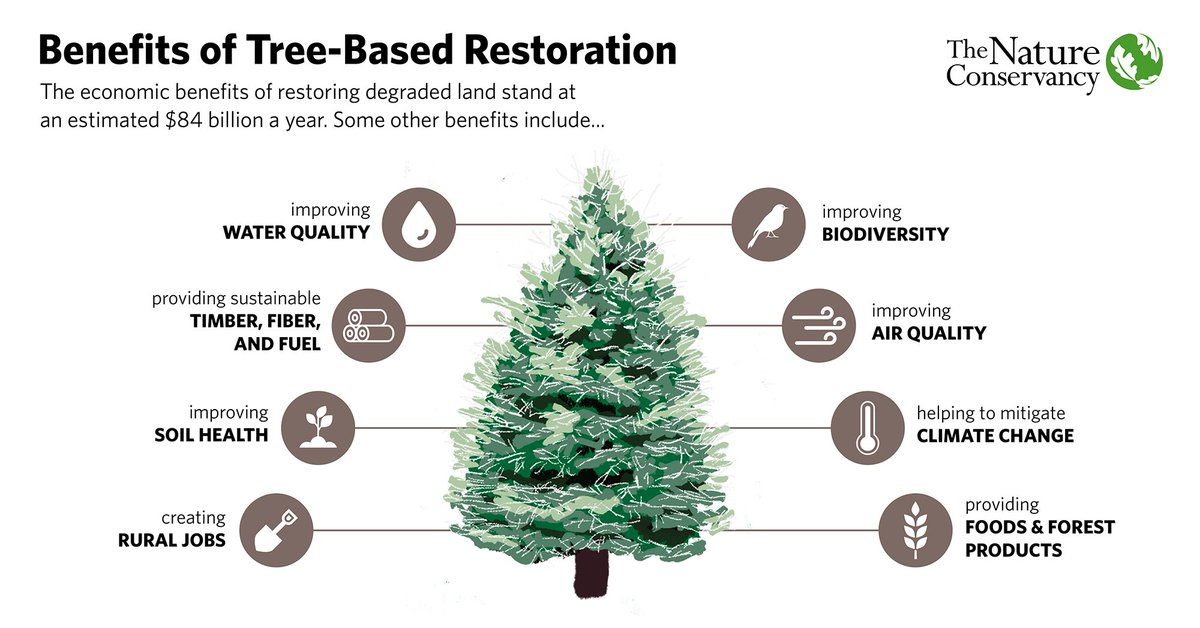 Biodiversity. Jobs. Air quality. Just a few of the many benefits that come from planting trees. https://t.co/bC4dQkt1nK #ArborDay